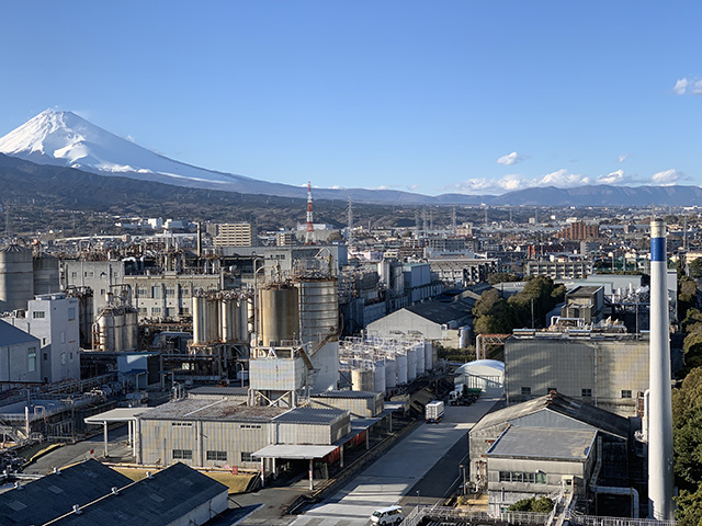 Mishima Hotel View